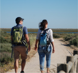 Real Algarve & Tavira Walking